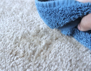 matthews carpet cleaning