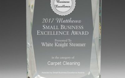 Small Business Excellence Awards 2017